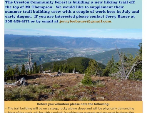 Volunteers needed: Trail Building on Mt. Thompson